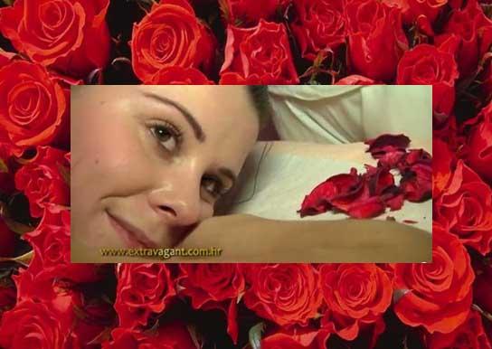 sadnica-ruza-cajevka-crvena-_slika_o_625991
