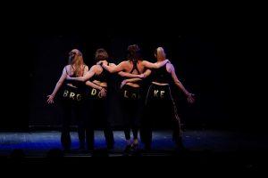 Predstava 'Brodolomke' (4)
