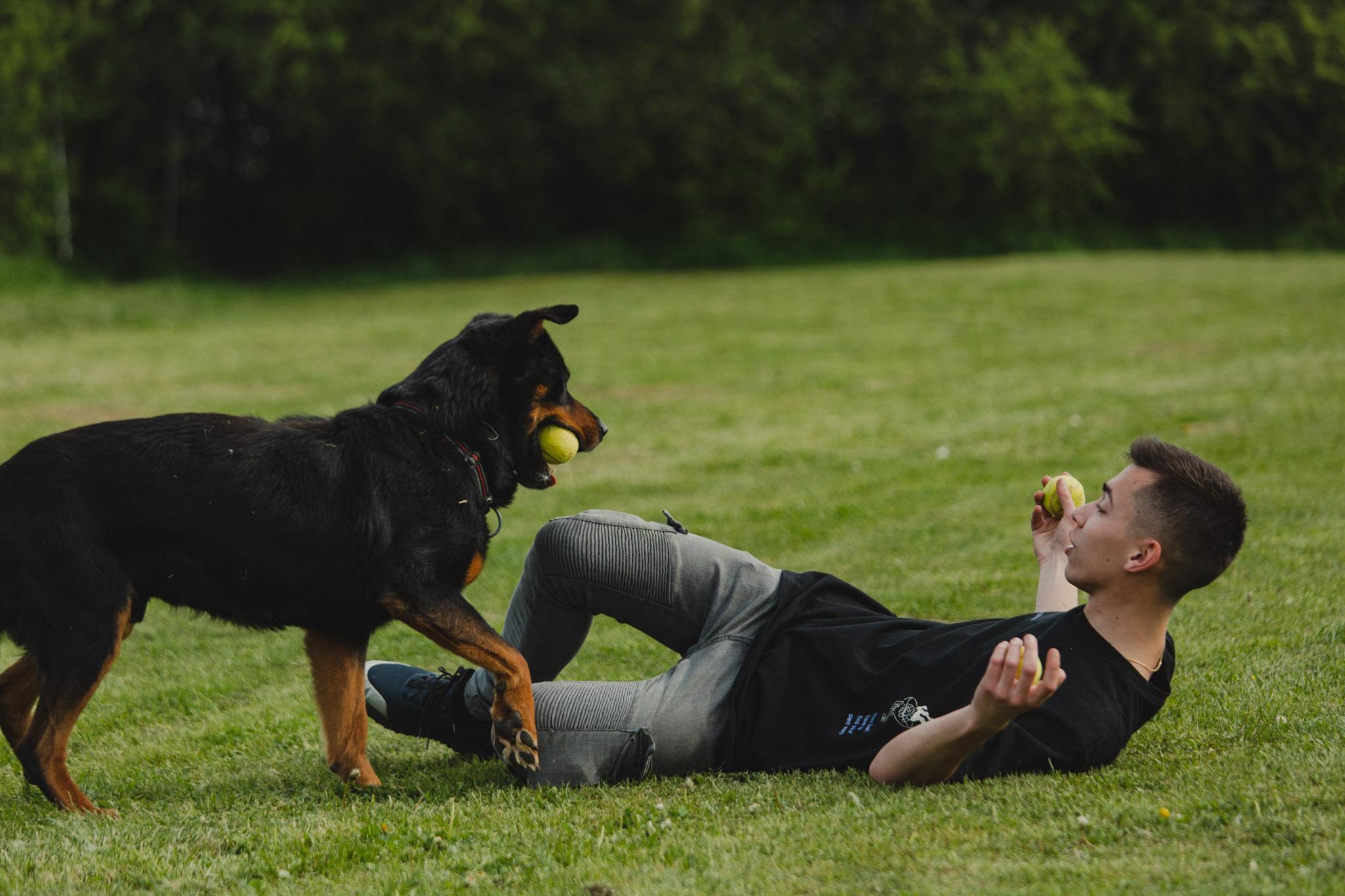 Malo im za sreću treba… Fran je na trenutak usrećio brojne napuštene psiće