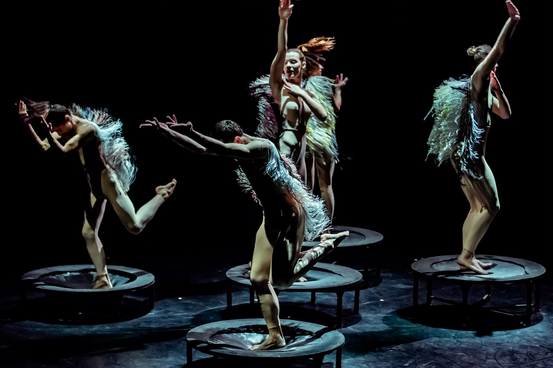 Ne propustite povratak riječkog HNK u pulsku Arenu: glazbeni spektakli na najljepšoj ljetnoj pozornici