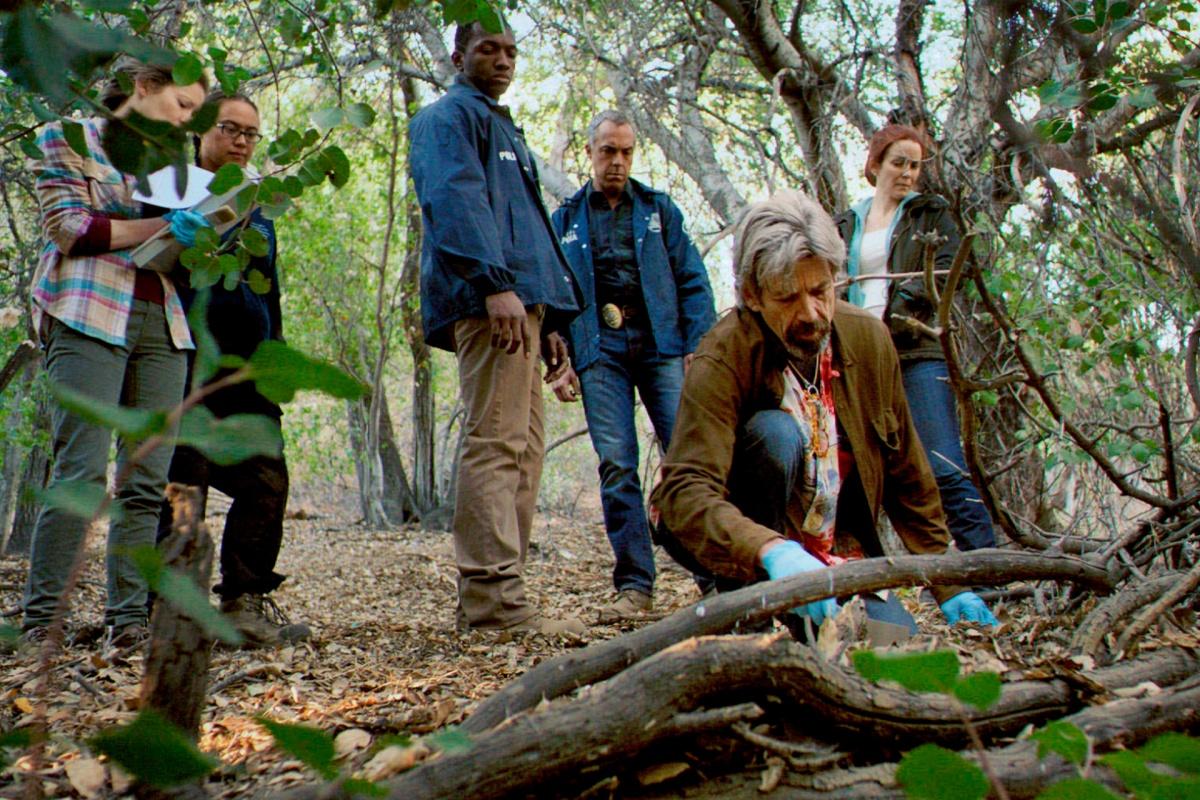 Popularna TV serija 'Bosch' na CineStar TV Premiere 1 kanalu